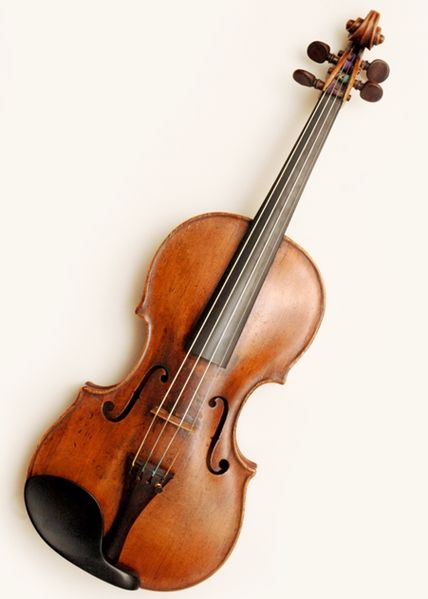the musicians studio violin viola lessons near rumson fair haven